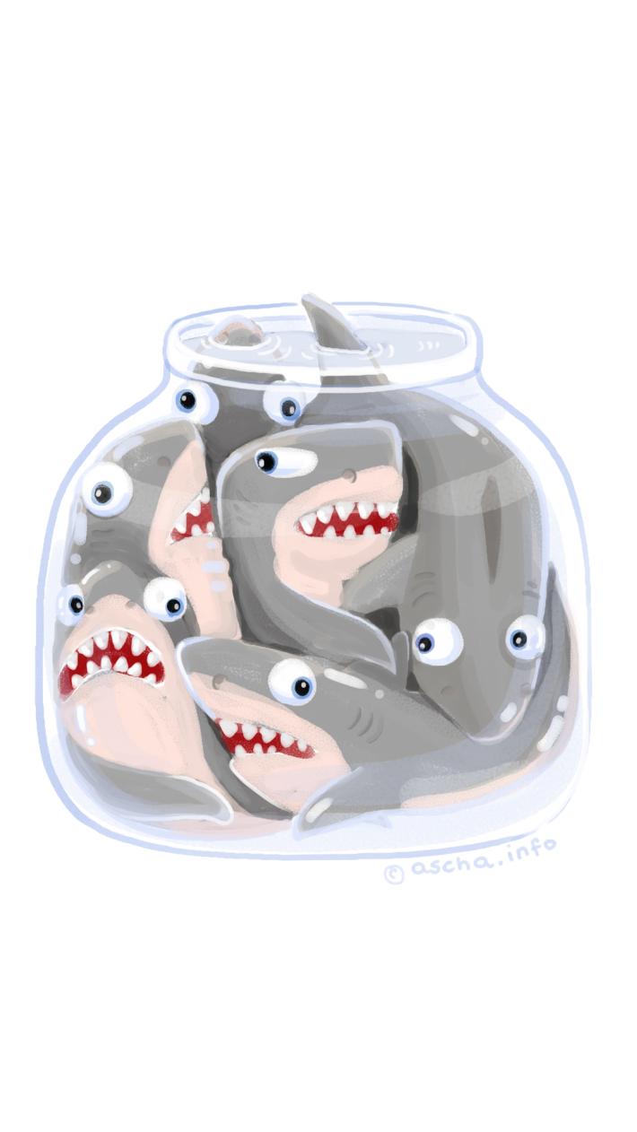 sharks jar wallpaper by ascha funny
